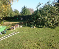 Nagri - Entretien parc et jardin